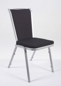 Conference chair Vio